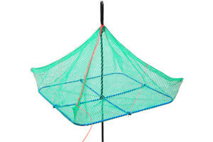 Green square net