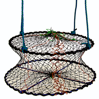 Oyster net